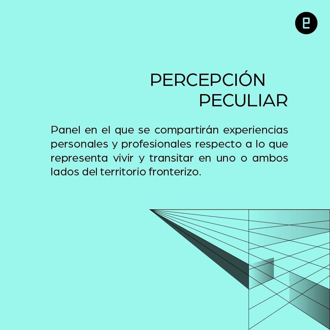 percepcion peculiar